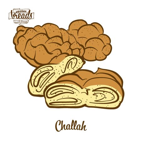 challah bread. Vector illustration of Leavened food, usually known in Poland and Israel. Colored Bread sketches.
