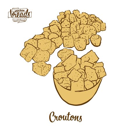 Croutons bread. Vector illustration of Crispy bread food, usually known in France. Colored Bread sketches.