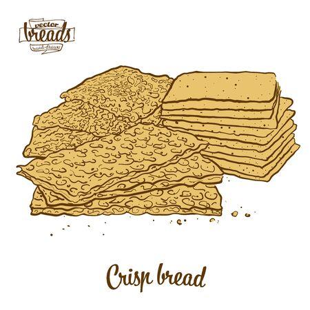 Crisp bread bread. Vector illustration of Crispy bread food, usually known in Scandinavia. Colored Bread sketches.