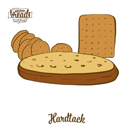 Hardtack bread. Vector illustration of Flatbread food, usually known in . Colored Bread sketches.