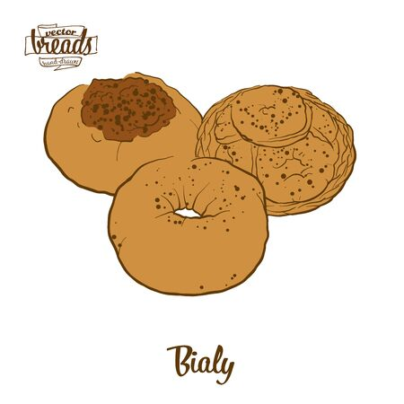 Bialy bread. Vector illustration of Yeast bread food, usually known in Central Europe. Colored Bread sketches.  イラスト・ベクター素材