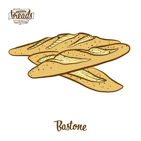 Bastone bread. Vector illustration of Yeast bread food, usually known in Italy. Colored Bread sketches. Illustration