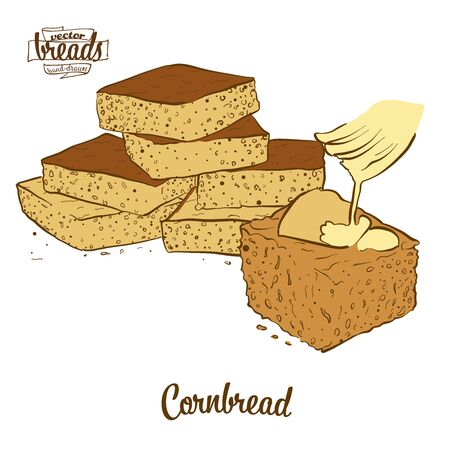 Cornbread bread. Vector illustration of Cornbread food, usually known in America. Colored Bread sketches.