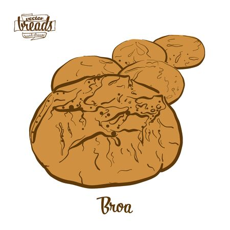 Broa bread. Vector illustration of Cornbread food, usually known in Portugal. Colored Bread sketches. Ilustracja
