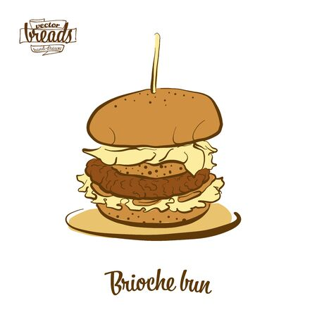 Brioche bun bread. Vector illustration of Yeast bread, Sweet, Bun food, usually known in France. Colored Bread sketches. Illustration
