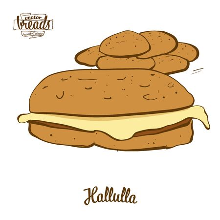 Hallulla bread. Vector illustration of Flatbread food, usually known in Chile. Colored Bread sketches.