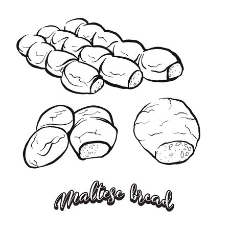 Maltese bread food sketch separated on white. Vector drawing of Sourdough, usually known in Malta. Food illustration series.