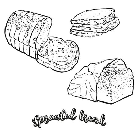Sprouted bread food sketch separated on white. Vector drawing of Sprouted, usually known in Europe. Food illustration series.
