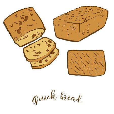 Colored drawing of Quick bread bread. Vector illustration of Leavened food, usually known in North America. Colored Bread sketches.