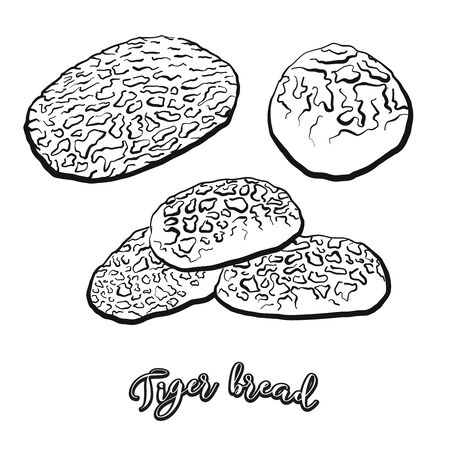 Tiger bread food sketch separated on white. Vector drawing of Rice bread, usually known in Netherlands. Food illustration series.