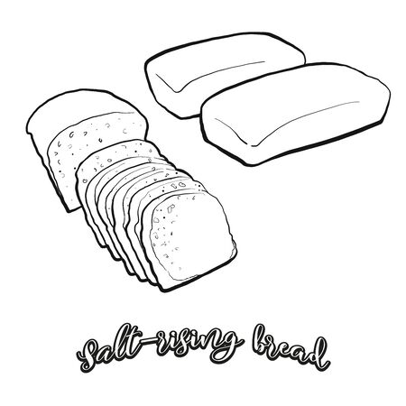 Salt-rising bread food sketch separated on white. Vector drawing of Leavened, usually known in United States. Food illustration series.