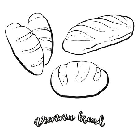 Vienna bread food sketch separated on white. Vector drawing of Leavened, usually known in Austria, Vienna. Food illustration series.
