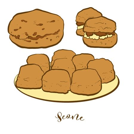 Colored drawing of Scone bread. Vector illustration of Quick bread food, usually known in United Kingdom. Colored Bread sketches.