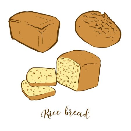 Colored drawing of Rice bread bread. Vector illustration of Rice bread food, usually known in Japan. Colored Bread sketches.