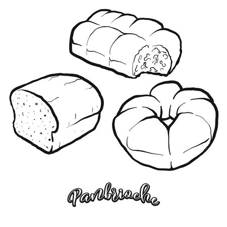 Panbrioche food sketch separated on white. Vector drawing of Leavened, usually known in Italy. Food illustration series.