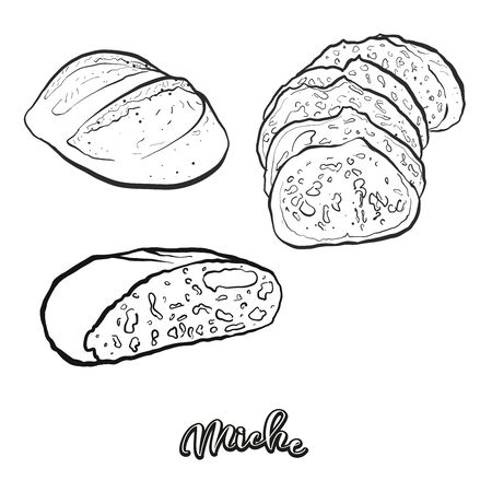 Miche food sketch separated on white. Vector drawing of Leavened, usually known in France. Food illustration series.