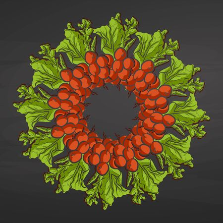 Radishes arranged in a circle. Seamless round composition with hand drawn veggies. Vector illustration on blackboard.