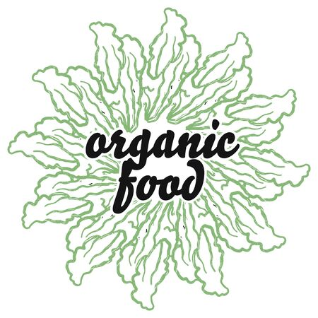 organic food sign on background of Lettuce. Round composition with hand-drawn veggies for art prints.