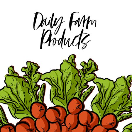 Daily Farm Products lettering and Radishes advertising template. Hand drawn Illustration, handwritten on white background. Ilustracja