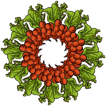 Radishes arranged in a circle. Seamless round composition with hand drawn veggies. Vector illustration on white background. Ilustracja