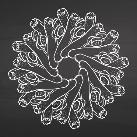Outline version of Courgettes arranged in a circle. Seamless round composition with hand drawn veggies. Vector illustration on blackboard