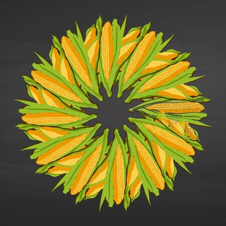 Corncob arranged in a circle. Seamless round composition with hand drawn veggies. Vector illustration on blackboard. Ilustracja