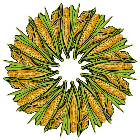 Corncob arranged in a circle. Seamless round composition with hand drawn veggies. Vector illustration on white background.