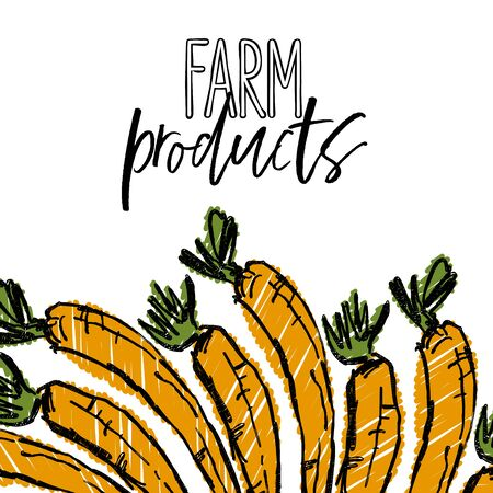 FARM products lettering and Carrots advertising template. Hand drawn Illustration, handwritten on white background.
