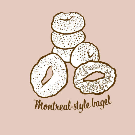 Hand-drawn Montreal-style bagel bread illustration. Yeast bread, usually known in Canada. Vector drawing series.