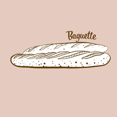 Hand-drawn baguette bread illustration. Yeast bread, usually known in France. Vector drawing series. Imagens - 155910977