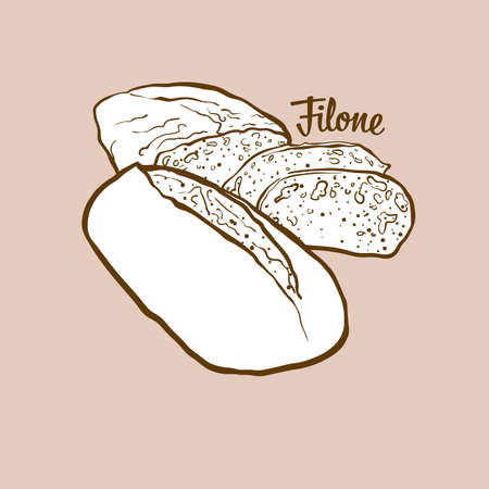 Hand-drawn Filone bread illustration. Leavened, usually known in Italy. Vector drawing series.