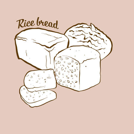 Hand-drawn Rice bread bread illustration. Rice bread, usually known in Japan. Vector drawing series.