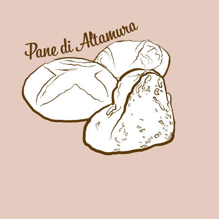 Hand-drawn Pane di Altamura bread illustration. Leavened, usually known in Italy. Vector drawing series. Imagens - 155910987
