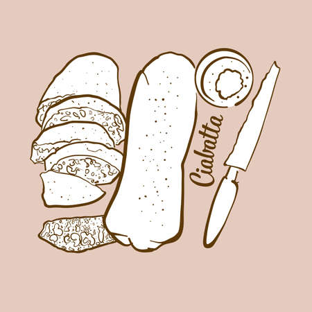 Hand-drawn Ciabatta bread illustration. White, usually known in Italy. Vector drawing series.