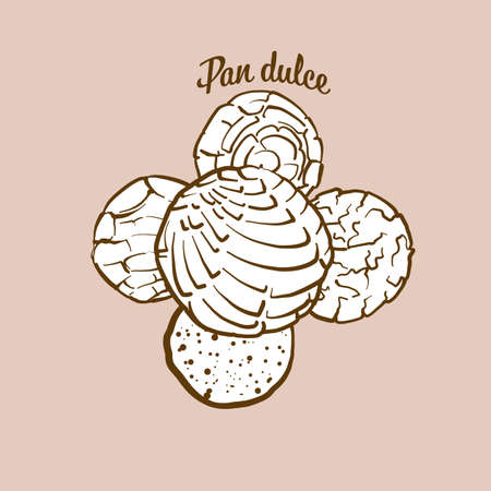 Hand-drawn pan dulce bread illustration. Sweet bread, usually known in Mexico. Vector drawing series. Ilustração