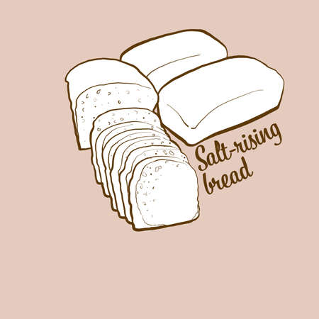Hand-drawn Salt-rising bread bread illustration. Leavened, usually known in United States. Vector drawing series.