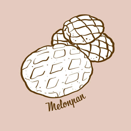 Hand-drawn melonpan bread illustration. Sweet bun, Crispy, usually known in Japan. Vector drawing series. Imagens - 155911060