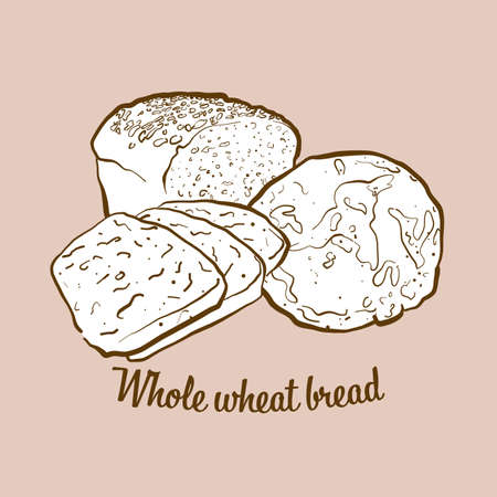 Hand-drawn Whole wheat bread bread illustration. Leavened, usually known in Europe, USA. Vector drawing series.