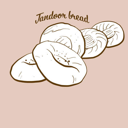 Hand-drawn tandoor bread bread illustration. Flatbread, usually known in Asia, Caribbean, Afghanistan, Pakistan. Vector drawing series. Imagens - 155911072