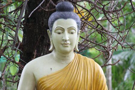 buddha image, Buddha Park, Wat Burapaphiram, Roi-et photo