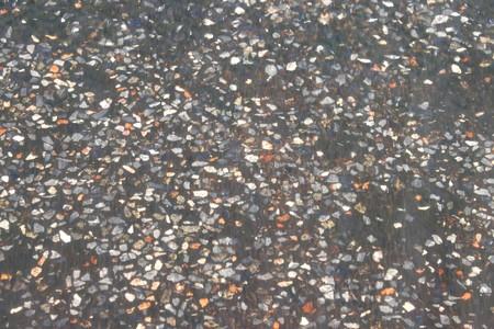 Terrazzo Floor Under Water photo