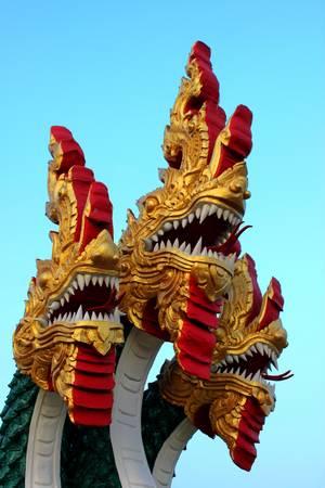 Dragons photo