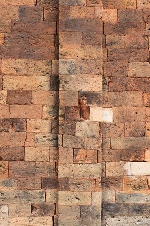 Wall background at Prasat Sikhoraphum Brick and sandstone Sanctuary, Surin, Thailand Stock Photo - 9328179