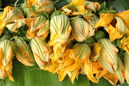 pumpkin flowers  photo
