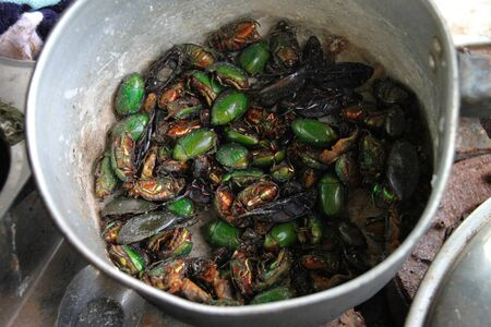 Roasted insects or bugs in pot over a traditional Thai stove and used as snack or light meal photo