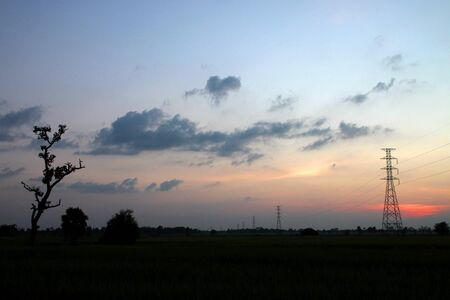 A picture of high voltage electricity posts in jasmine rice field at sunset photo