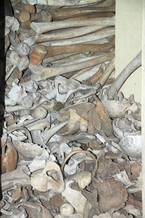A picture of human bones from the killing field in Wat Tep Pothivong (Wat Thmey), Siemreap, Khmer Republic. photo