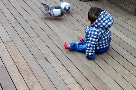 CENTRAL SEOUL, KOREA - NOVEMBER 27 : The unidentified boy is looking at birds on wooden floor on November 27, 2011 at Namsan Seoul Tower, Central Seoul, Korea. Stock Photo - 11414105