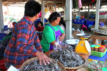 CHUMPONBURI, SURIN - DECEMBER 18 : The unidentified woman is selling dried fishes on December 18, 2011 at outdoor fishes market, Chumponburi, Surin, Thailand. Stock Photo - 11728827