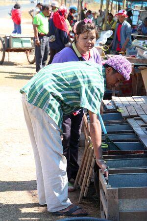 PAYAKKAPHUMPHISAI, MAHASARAKHAM - JANUARY 1 : The unidentified man is buying fresh fishes on January 1, 2012 at outdoor fishes market, Payakkaphumphisai, Mahasarakham, Thailand. Stock Photo - 11728815